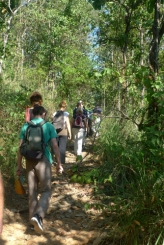 Wat Palaad walk aw 182